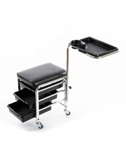Professional cart with shelves