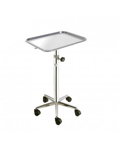 Mobile stand with removable tray