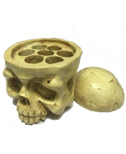Caps of pigments holder (Skull)